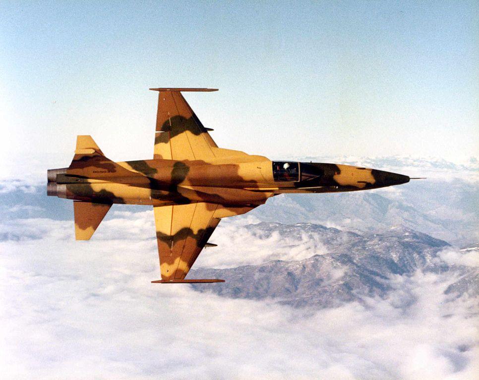 USAF Northrop F-5E Tiger II.