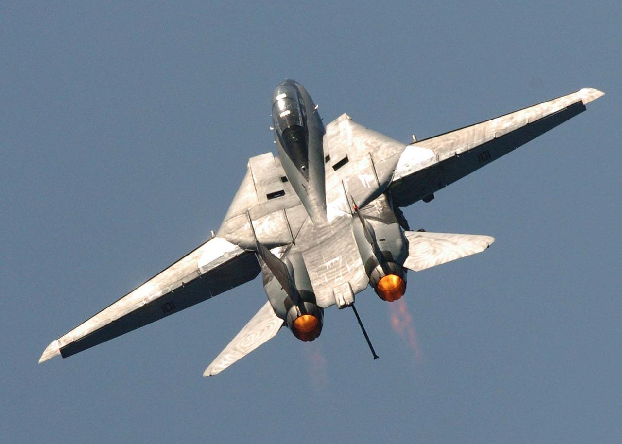 F-14 A/B von Heatblur Simulations - Combat Pilot im DCS
